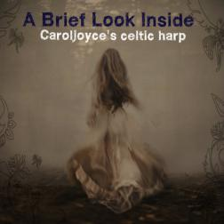 A Brief Look Inside Caroljoyce's Celtic Harp