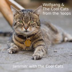 Jammin' with the Cool Cats