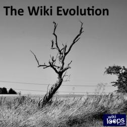 The Wiki Evolution