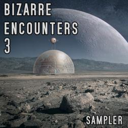 bizarre encounters 3