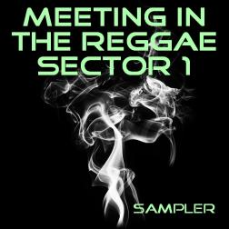meeting in the reggae sector 1