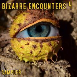 bizarre encounters 4