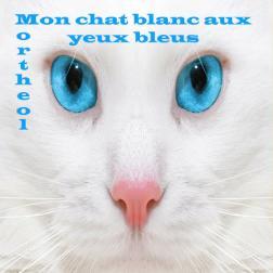 Mon chat blanc aux yeux bleus