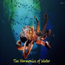 The Harmonics of Water