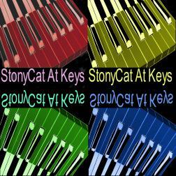 StonyCat At Keys