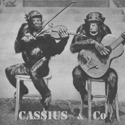 Cassius & Co