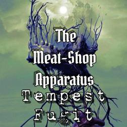 Tempest Fugit