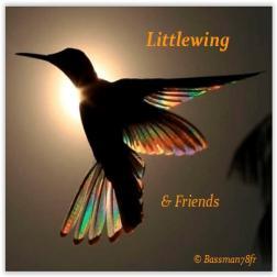Littlewing & Friends