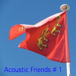 Acoustic Friends # 1