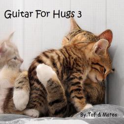 Guitar For Hugs 3