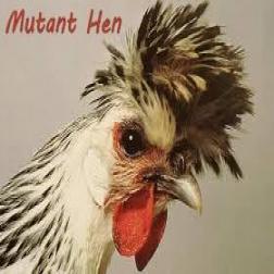 Mutant Hen