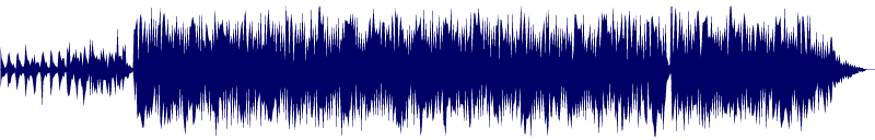 waveform of track #100306